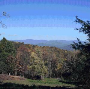 Arrowmont Stables and Cabins, LLC