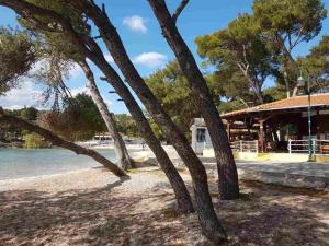 Mobile Homes Seashell Soline, Holiday parks  Biograd na Moru - big - 29