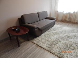 Apartamienty Green Forest, Appartamenti  Borovlyany - big - 5