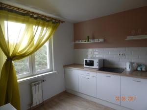 Apartamienty Green Forest, Appartamenti  Borovlyany - big - 8