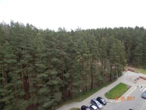 Apartamienty Green Forest, Appartamenti  Borovlyany - big - 9