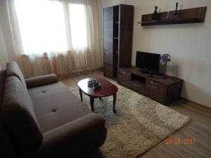 Apartamienty Green Forest, Appartamenti  Borovlyany - big - 12