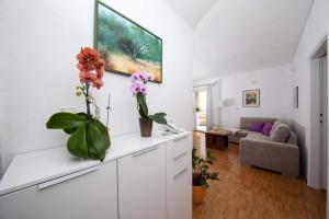 Apartments Lala, Ferienwohnungen  Tučepi - big - 9