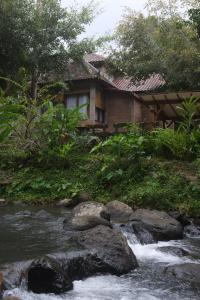 Mi Casa Ijen Guest House, Penzióny  Licin - big - 26