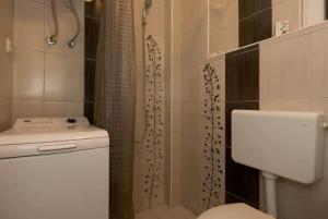 Apartment Augusta Brauna Sarajevo - фото 5