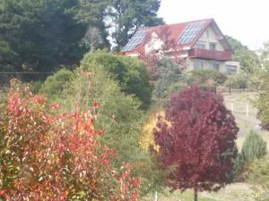 Abelia Cottages Of Daylesford Lakehigh, Nyaralók  Daylesford - big - 6