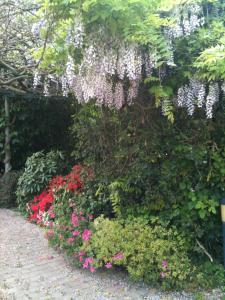CorteUndici, Bed and Breakfasts  Treviso - big - 19