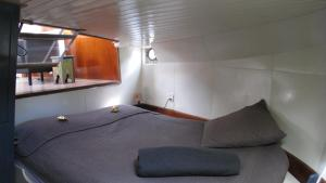 Houseboat Ms Luctor, Botely  Amsterdam - big - 2