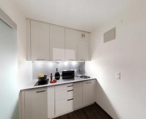 Lehner Appartements, Apartmány  Schladming - big - 3