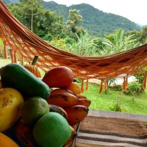 Casa do Capoeira Paraty, Ubytování v soukromí  Paraty - big - 26