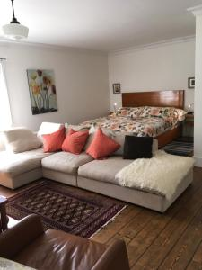 The Lucky Dog Bed & Breakfast