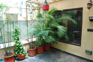 Ansh, Apartments  New Delhi - big - 8