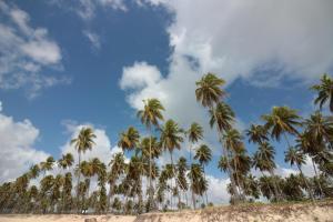 Flats Praia do Paiva