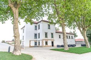 Borralha Guest House, Bed and Breakfasts  Vila Real - big - 30