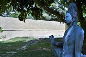 The Ficus Grove, Hotel  Habarana - big - 16