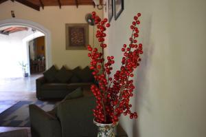 The Ficus Grove, Hotel  Habarana - big - 28
