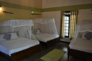 The Ficus Grove, Hotel  Habarana - big - 4