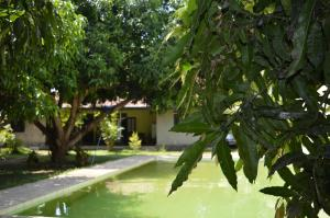 The Ficus Grove, Hotel  Habarana - big - 39
