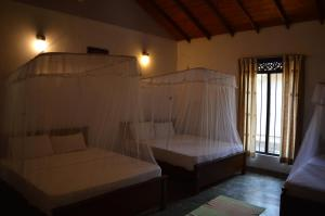 The Ficus Grove, Hotel  Habarana - big - 2