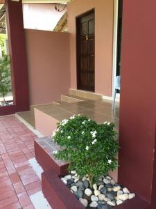 Harmony Guesthouse Sdn Bhd, Penzióny  Kampung Padang Masirat - big - 28