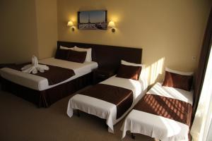 Отель Терраса - фото 4