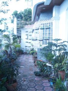 Geordie's Hostel and Cafe, Pensionen  Manila - big - 18