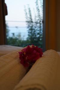 Lagounaris Beach Hotel