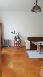 Dostalek & Son City apartment