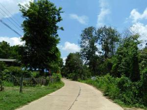 Ada's Place, Гостевые дома  Ubon Ratchathani - big - 39