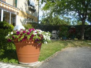 Hotel des Fleurs
