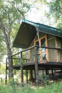 Ndzhaka Tented Camp, Zelt-Lodges  Manyeleti Game Reserve - big - 3