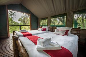 Ndzhaka Tented Camp, Luxury tents  Manyeleti Game Reserve - big - 4