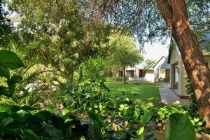 River View Lodge, Lodges  Kasane - big - 34