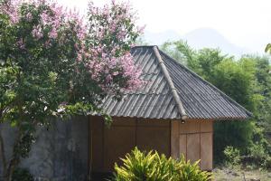 obrázek - Eastern Peace House