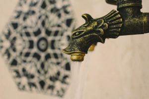 İsa Begov Hamam Hotel - фото 2