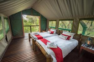 Ndzhaka Tented Camp, Luxury tents  Manyeleti Game Reserve - big - 6