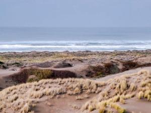Mendocino Dunes - Dune Flower, Prázdninové domy  Fort Bragg - big - 38