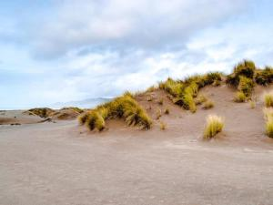 Mendocino Dunes - Dune Flower, Prázdninové domy  Fort Bragg - big - 13