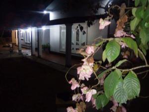 Cokuss Garden House, Виллы  Weliweriya - big - 25