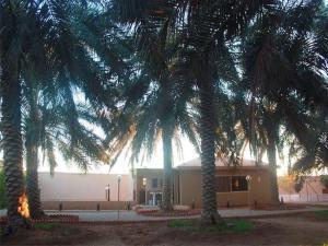 Al Wafa Oasis