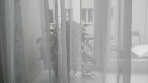 Апартаменты На Буденного 45 - фото 23