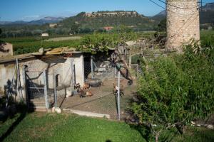 Mas Taniet Hotel Rural, Загородные дома  Benissanet - big - 25