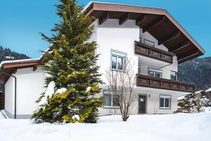 Haus Johnannes Mangard, Ferienwohnungen  Sankt Gallenkirch - big - 1