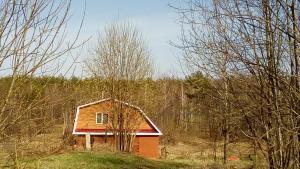 Dom-banya Yagodka, Country houses  Selishche - big - 20