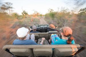 Ndzhaka Tented Camp, Zelt-Lodges  Manyeleti Game Reserve - big - 7