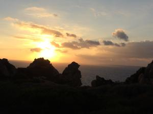 Ginepro Giallo, Holiday homes  Costa Paradiso - big - 29