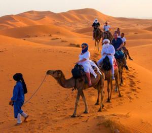 Riad Desert Camel, Hotels  Merzouga - big - 28