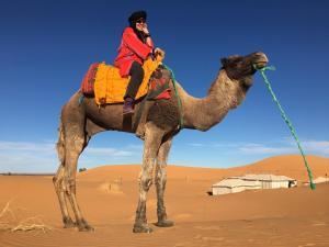 Riad Desert Camel, Hotels  Merzouga - big - 29