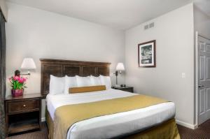 University Park Inn & Suites, Hotel  Davis - big - 8