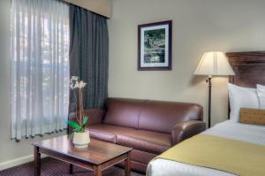 University Park Inn & Suites, Hotel  Davis - big - 4